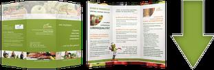 KOSTBAR Ernährungsberatung in Sachsen-Anhalt, Broschuere als kostenloser Download/ Doreen Garlipp-Ihre kompetente und fachgerechte Diätassistentin und Ernährungsberaterin