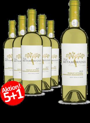 6-er Weinpaket     Viile Metamorfosis MUSCAT OTTONEL 2017   5+1 GRATIS-AKTION