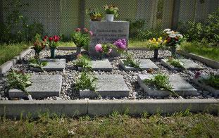 8. Mai - Im Gedenken