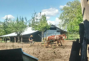 Campesino trabajando la tierra