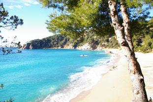 """Playa de """"Santa Maria de Llorell"""""""