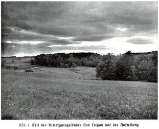 LAPAG Berlin: Teil des ehemaligen Ritterguts-Geländes vor der Parzellierung durch die LAPAG