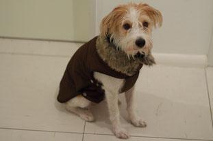Mein neuer Mantel