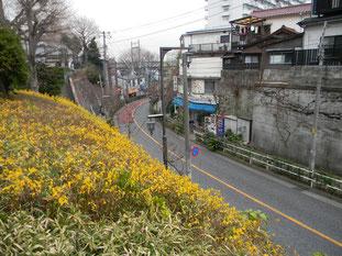 平塚神社に向かう坂道