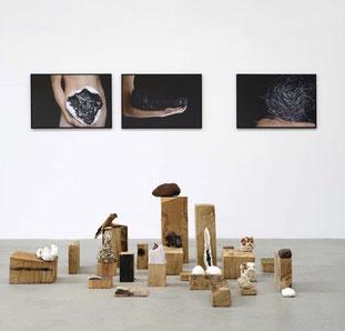 Laurence Nicola - Vue d'exposition