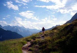 im Hintergrund das mächtige Bergell-Gebirge