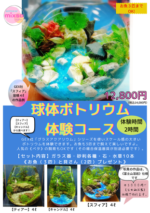 【球体ボトリウム®体験コース】