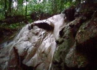 Hidden waterfalls in the jungle
