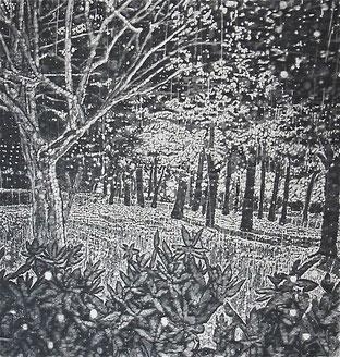 田中恵美 night park 水性木版 97x92cm