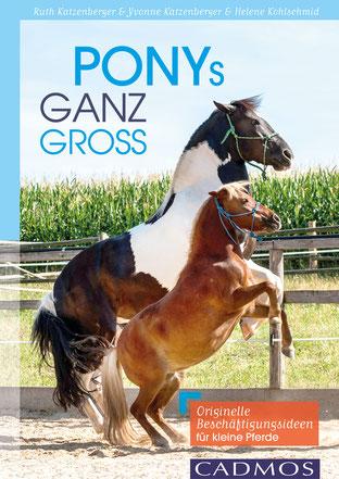 Egal ob Zirkuslektionen, Wandern mit Pferd, Bodenarbeit oder Kutsche fahren: Ponys ganz groß ist DEIN Buch, wenn es um das Training von Ponys geht.