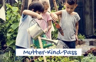 Kinderarzt, Mutter-Kind-Pass
