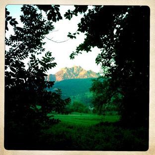 Blick auf den Pilatus vom Bireggwald in Luzern/2013 LH