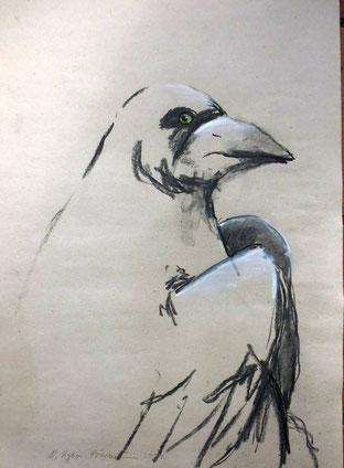 Bild: Krähenvogel