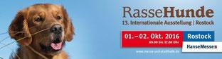 Rassehundeausstellung Rostock 2016