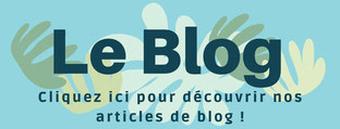 blog-articles-sophrologie-instant du phenix