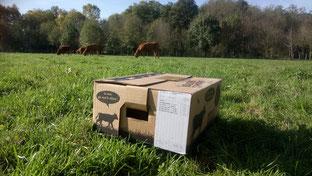 Morceaux de veau limousin dans un colis de 5kg de l'élevage de le ferme de Chey