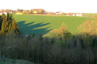 Sonntag früh halb sieben - Ein Ausblick in Vilshofen