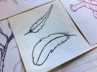 Hand drawn feathers used to digitally design the feather sticker sets.
