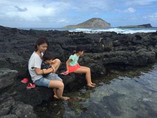 ハワイ オアフ島 東海岸 マカプウヒーリングプール オプショナルツアー 専用車での貸切観光 チャーター 日本語タクシー