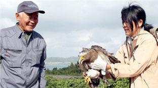 2度目の交通事故に遭い、再び放鳥されたカンムリワシの崎ちゃん。左は発見した石垣真宣さん=4日午前、崎枝