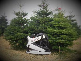 e-Bikes passen unter den Weihnachtsbaum