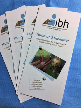 HundeLächeln, IBH-Flyer, Hund und Silvester