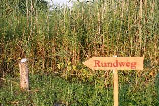 Der Rundweg wird durch Kiebitz-Plaketten markiert. Foto: Biostation