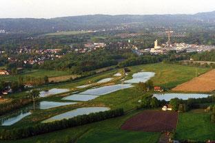 Windelsbleicher Seenplatte: Die neuen Rieselfelder aus der Luft. Das Firmengelände Windel rechts im Hintergrund. Foto: Bockwinkel