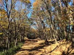 東松山岩殿観音の近くです