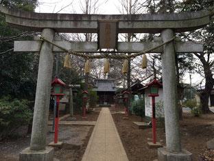 近所の熊野神社です