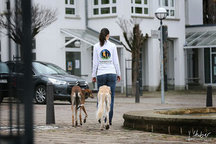 Frau mit ihren Windhunden in der Stadt unterwegs
