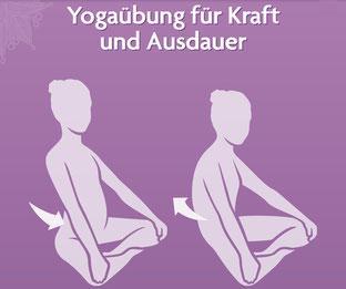 Asanas und Yoga Übungen für Yoga Anfänger und Fortgeschrittene - Yogaübung für Kraft und Ausdauer - yogitea.com