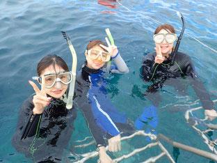 石垣島でのんびり体験ダイビング「みんなでダイビング」ヒートハートクラブ