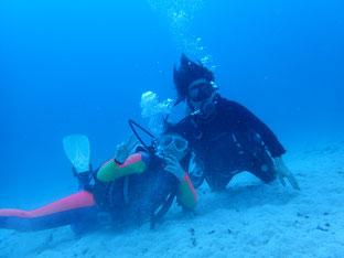 石垣島でのんびりダイビング「竹富島南の砂地で」