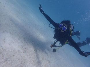 石垣島でのんびりダイビング「初ファンダイブ」ヒートハートクラブ