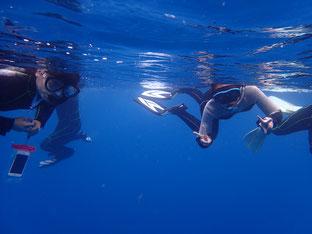 石垣島で初心者ダイビング「シュノーケリング&ダイビング」ヒートハートクラブ