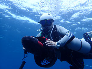 石垣島でのんびりダイビング「水中スクーター」ヒートハートクラブ