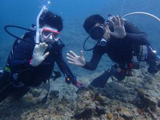石垣島でのんびりダイビング「ライセンス講習」ヒートハートクラブ