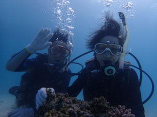 石垣島でのんびりダイビング「ご夫婦で体験ダイブ」ヒートハートクラブ