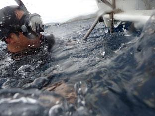 石垣島でのんびりダイビング「プチ台風」ヒートハートクラブ