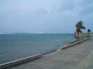 石垣島でのんびりダイビング「台風11号最接近中」ヒートハートクラブ