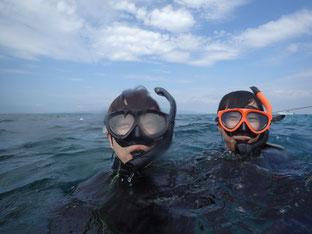 石垣島でのんびりダイビング「のんびり少人数」ヒートハートクラブ