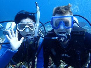 石垣島でのんびりダイビング「ニュージーランドから」ヒートハートクラブ