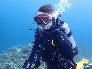 石垣島でのんびりダイビング「午前中2ダイブ」ヒートハートクラブ