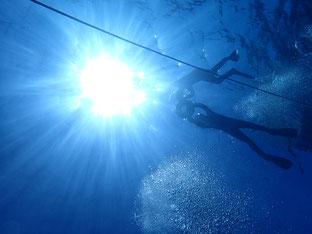 石垣島でのんびりダイビング「友達と一緒に」ヒートハートクラブ