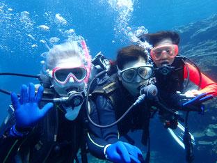 石垣島でほっこりダイビング「三度目の正直」ヒートハートクラブ