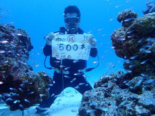 石垣島でのんびりダイビング「500ダイブ」