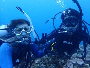 石垣島でのんびりダイビング「ダイナミックな地形」ヒートハートクラブ