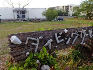 石垣島でのんびりダイビング「陸作業」ヒートハートクラブ