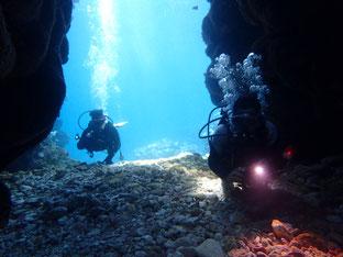 石垣島でのんびりダイビング「ドルフィンケーブ」ヒートハートクラブ